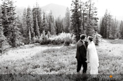 utah wedding photography salt lake city albion basin